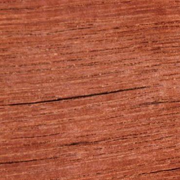 Southern mahogany